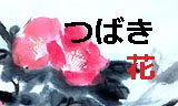 0190117_1k150.jpg